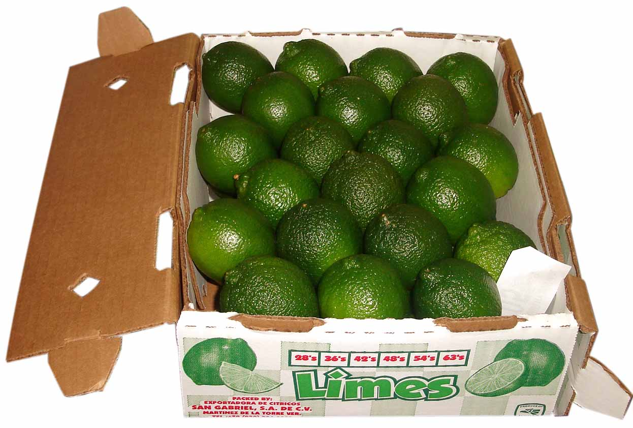 Limes 10 oct