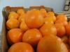 Fruta-Fresca-04