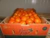 Fruta-Fresca-06