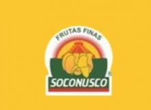 Soconusco